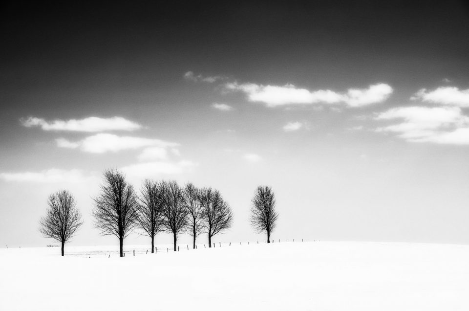 Paix hivernale / Wintery Peace